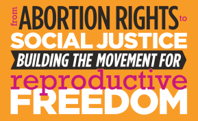 """Off to CLPP 2013 Conference """"From Abortion Rights to Social Justice: Building the Movement for ReproductiveFreedom"""""""