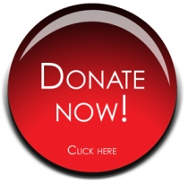 Donate Now image